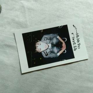 Seventeen Boys Be Dino Polaroid