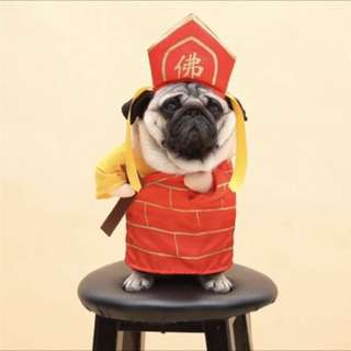 Dog cat cny costume clothes