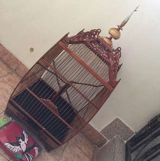 Brand New Penang Square cage with cover
