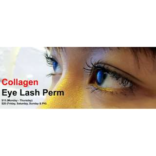 Collagen Eye Lash Perm