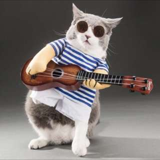 Cat dog costume guitar musician clothes