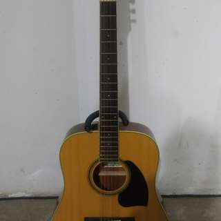 Ibanez 12 string guitar comes with bag