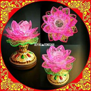 ▲BN Beautiful Lotus Flower Electrical Lamp Lighting▲