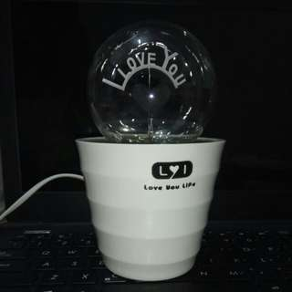 I LOVE YOU light bulb with wire