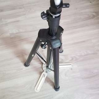 Hairdressing dolly head stand