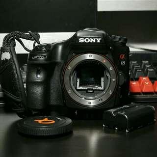 Sony A65 DSLT camera