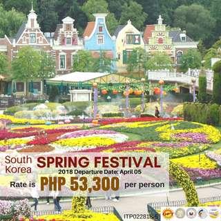 4D3N Spring Festival in South Korea