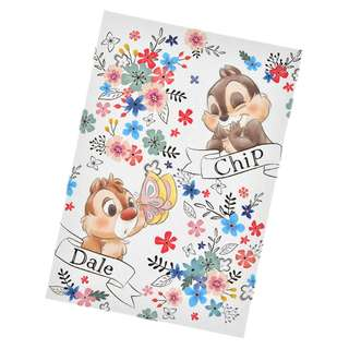 Japan Disneystore Disney Store Chip & Dale GARDEN Stamp Note