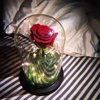DIY 閃耀紅玫瑰 一生摯愛 永生花 愛不止息 帶燈 禮物 情人 紀念日 結婚紀念