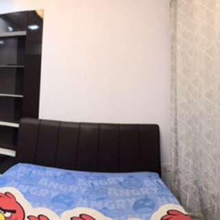 Canberra common room for rent