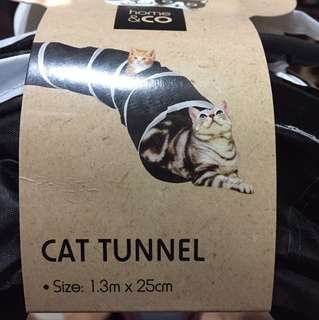 Cat Tunnel