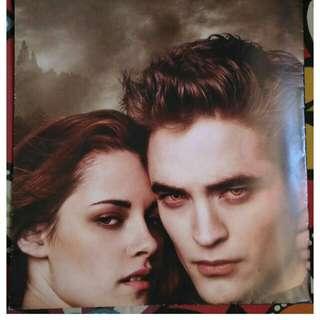 The Twilight Saga Posters
