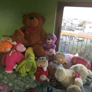 Stuffed Toys 100 each