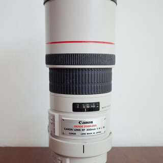 Canon 300mm f/4L IS USM
