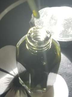 MY ULTIMATE RARE PURE AGARWOOD OIL