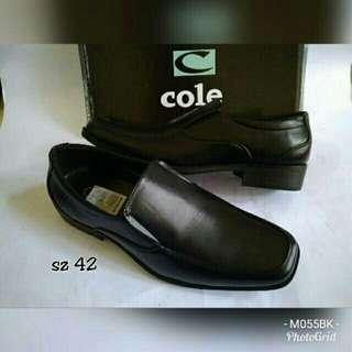 Sepatu COLE