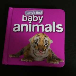 Baby's First: Baby Animals