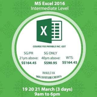 Microsoft Excel 2016 Course
