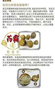 Porcupine Dates (Blood type &  white type from volcano)药霸箭猪枣