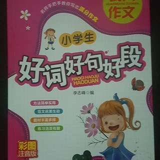 Primary School Chinese Compo book