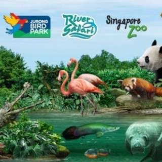 Singapore Zoo/ Night Safari