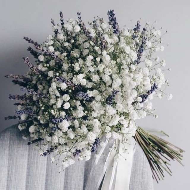 Baby breath with lavender bouquet gardening on carousell