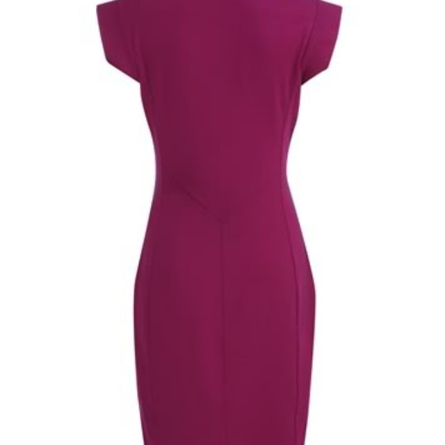 Brand new Ted Baker Eshara Dress - Size 3