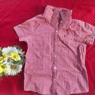 Red Gingham Polo