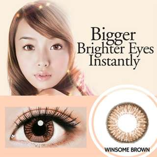 FreshKon Alluring Eyes 1 Day  Lenses -  Winsome Brown     Contact Color