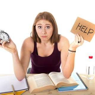 Assignment Help for All