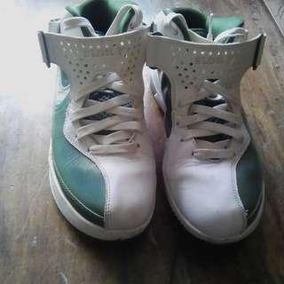 Nike LeBron Air Max Soldier V