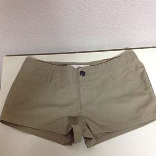 *BRAND NEW* Hollister Co. Causal Shorts