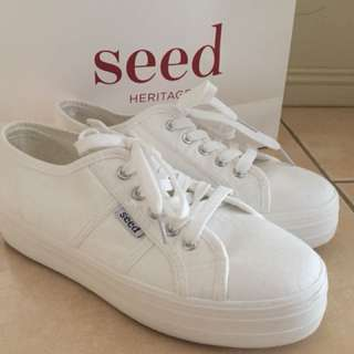 SEED Billie Shoes