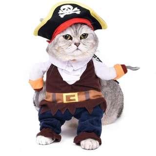 Cat Pirate Costume