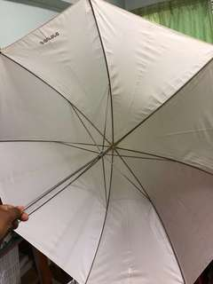 Translucent Studio Light Umbrella (small)