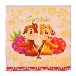 Japan Disneystore Disney Store Hello Chip and Dale Guest Towel Preorder