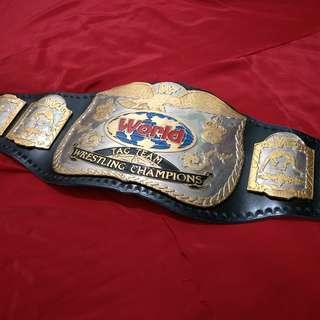 WTS: WWF WWE Classic Tag Team Championship Wrestling Belt Replica