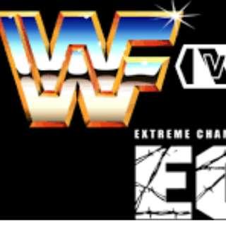 Wrestling Belts Replica WWE  ECW WWF WWF UFC TNA ROH