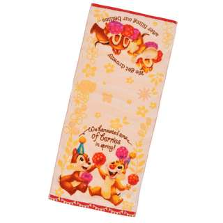 Japan Disneystore Disney Store Hello Chip and Dale Face Towel Preorder