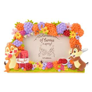 Japan Disneystore Disney Store Hello Chip and Dale Photo Frame Preorder