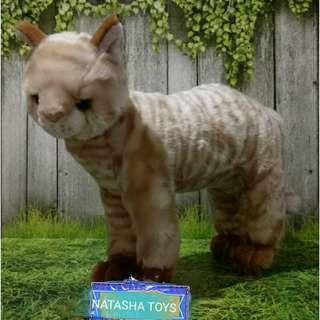 Boneka Kucing Red Tabby Standing