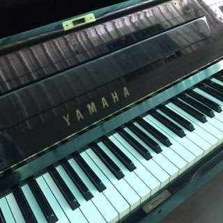 🚚 小岡樂器嚴選Yamaha台製U1