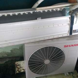 Ac sharp 1/2 pk