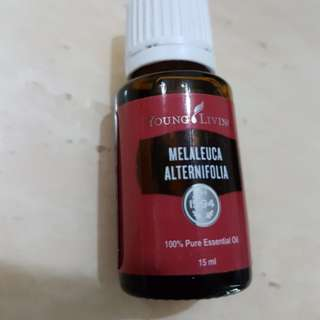 Young Living Tea Tree 15ml (Melaleuca Alternifolia)