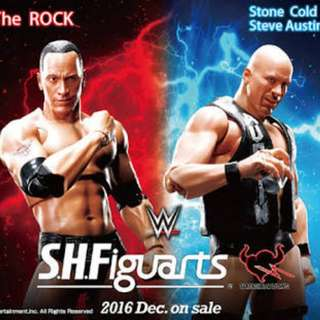 SHF Stone Cold & The Rock