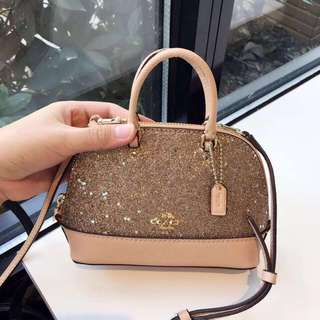 Coach Glitter Mini Sierra