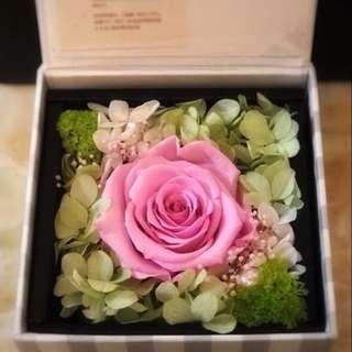 唯美 真心愛意漸濃 永生花紅玫瑰 生日 禮物 情侶 結婚 紀念