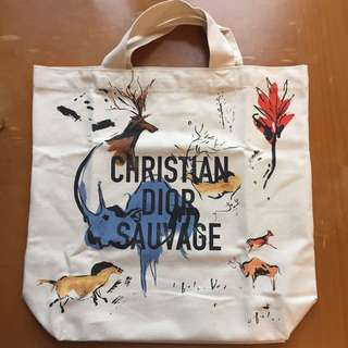 Christian Dior shopping bag