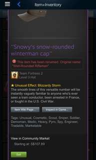 Team fortress 2 unusual blizzardy storm well-rounded rifleman