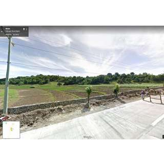FOR SALE 6.5HECTARES AGRICULTURAL LAND IN SALAPASAP CABUGAO ILOCOS SUR